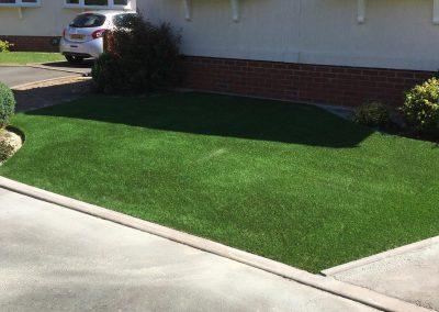 Fake Grass 3